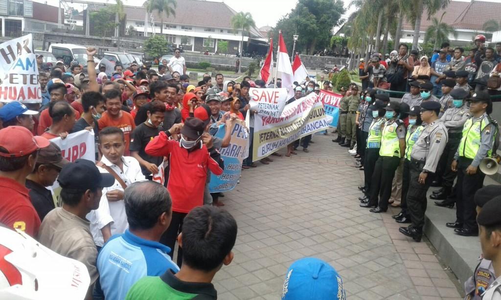 Demo Peternak Ayam Boyolali. Pinsar Indonesia